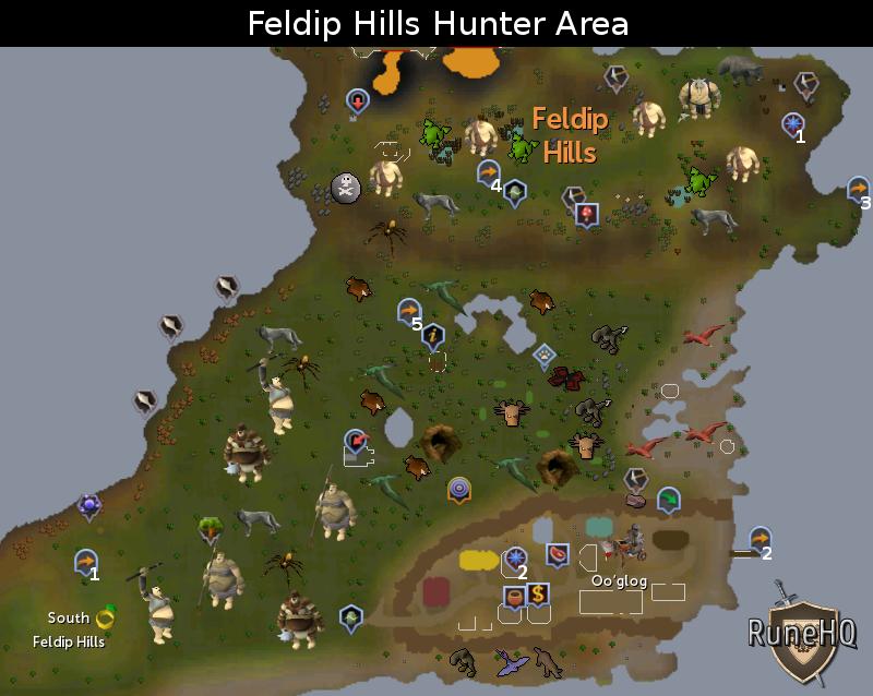 Feldip Hills Hunter Area Map - RuneScape Guide - RuneHQ