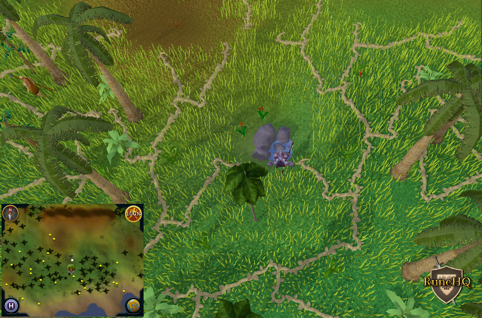 Iron mining runescape spots in eyes