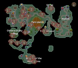 Zanaris scan locations