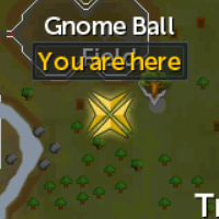 Gnome Ball Field