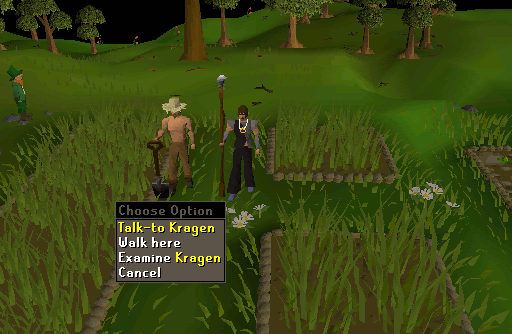 osrs garden of tranquility guide