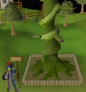how to go to woodcutting guild osrs