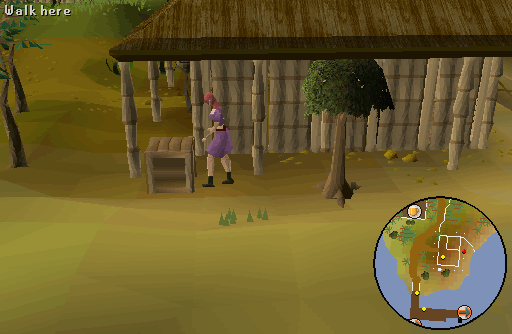 How To Find Eluned Osrs