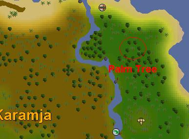 Osrs Shilo Village Runescape Guide Runehq