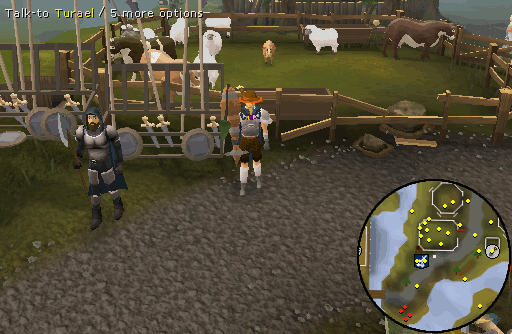 OSRS Animal Magnetism - RuneScape Guide - RuneHQ
