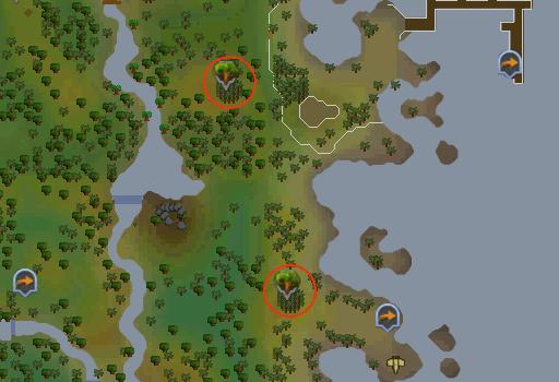 Woodcutting - RuneScape Guide - RuneHQ