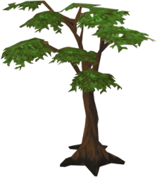 Regular Tree