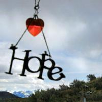 New Site Administrators - last post by Hope